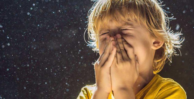 Luftreiniger bei Allergie