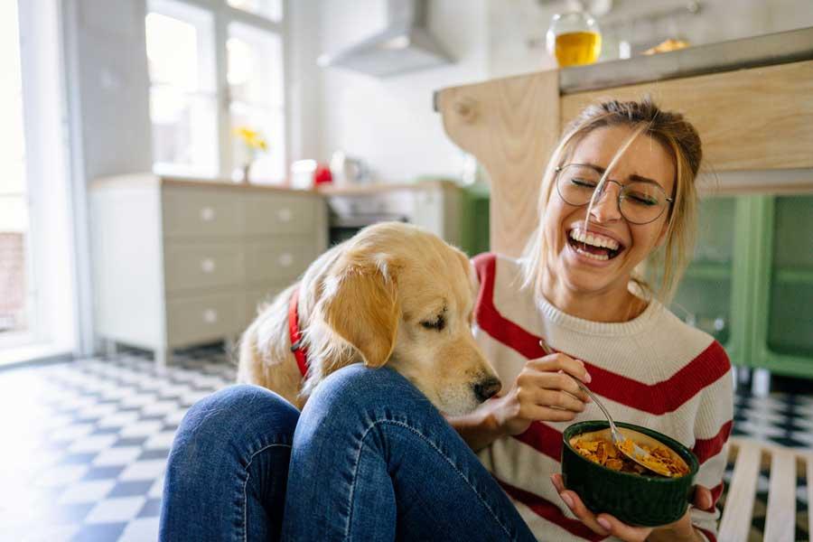 Luftfilter gegen Hunde- und Katzenhaare könnten vielen Haushalten helfen