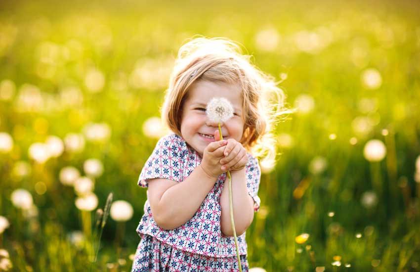 Pollen können Allergikern und Menschen mit Heuschnupfen vor allem in der Frühjahrszeit das Leben schwer machen.