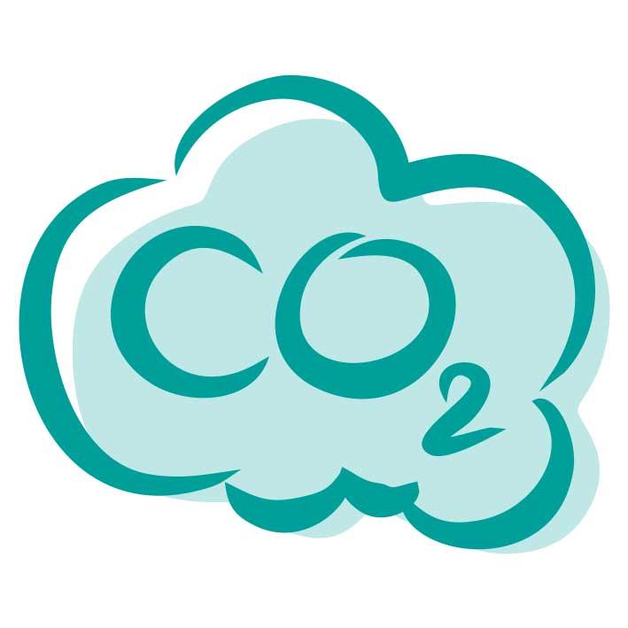 CO2 einsparen Icon