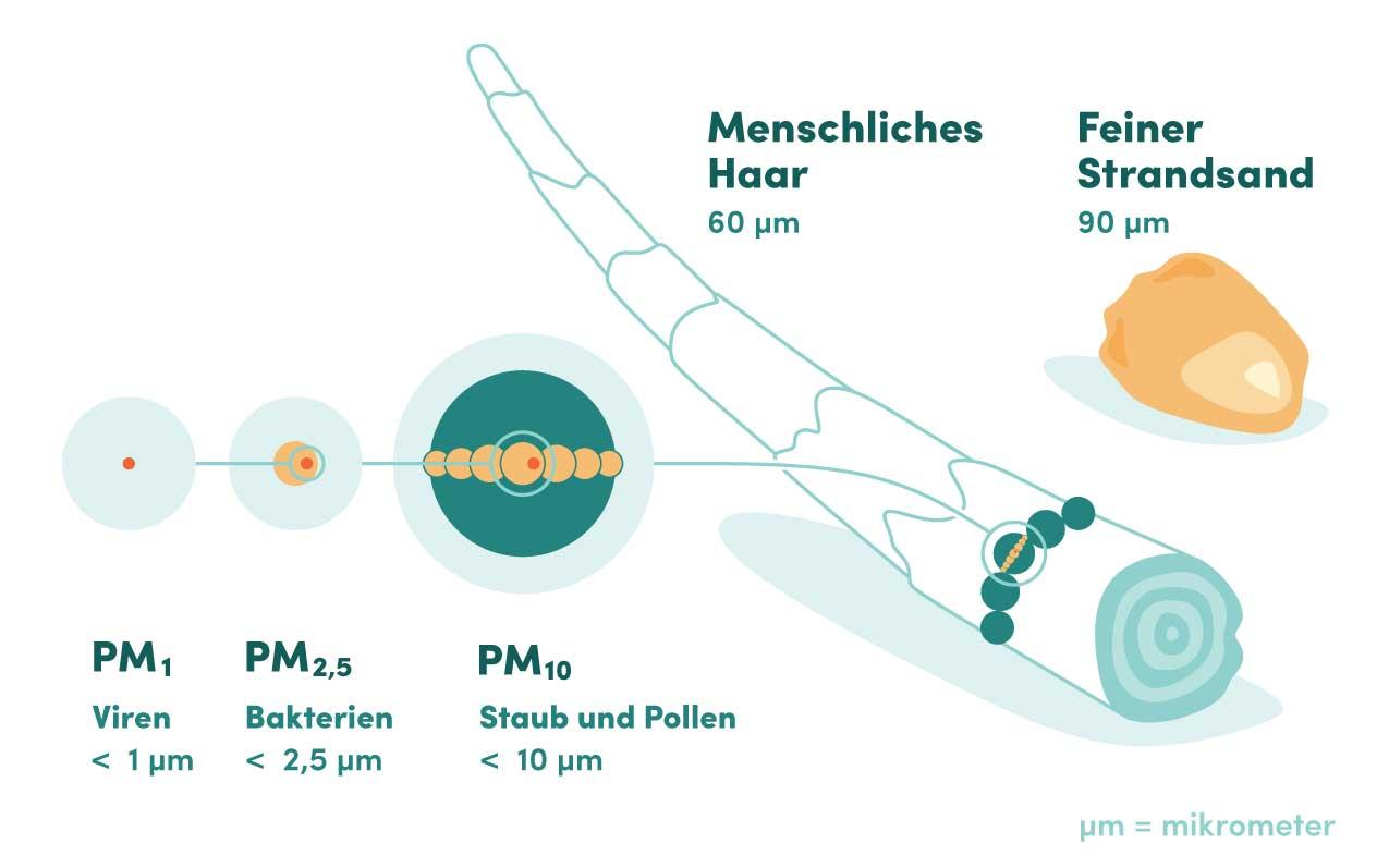 Illustration Staubpartikel im Vergleich