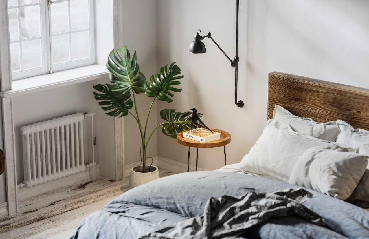 Pflanzen verhindern schlechte Luft im Schlafzimmer