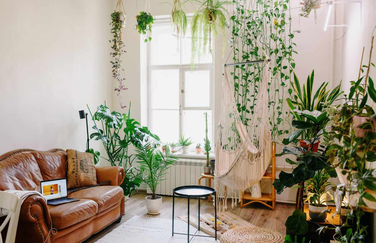 Pflanzenraum